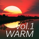 Warm Music, Vol. 1/Michael Yasyrev & Artsever & Reech & Alex Sender & Leonid Gnip & Paro Dion & Bad Surfer & Ekvator & Gloria & Amnesia & LifeStream & Anna Kraynidolski & Nic von Tribe & mr. Angel boy