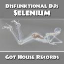 Selenium/Disfunktional DJs