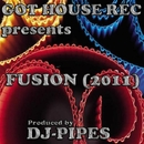 Fusion (2011)/DJ-Pipes