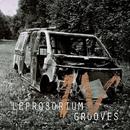 Leprosorium Grooves 4/Element One & Around The World in 80 Days & Reflection Nebula & KIROV & ..a few words talkers.. & Mayak Moesko & Mesto Sdaetsya & balinoff & Paskura & Electric Lords & Septa