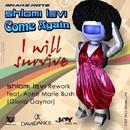 I Will Survive Rework/Shlomi Levi