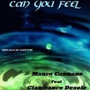Can You Feel (feat. Gianfranco Desole) - Single/Mauro Cannone