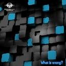 What Is Wrong - Single/DJ Achaemenid