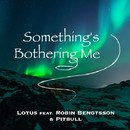 Something's Bothering Me (feat. Robin Bengtsson & Pitbull)/Lotus