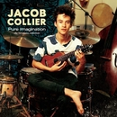 Pure Imagination -the hit covers collection-/JACOB COLLIER