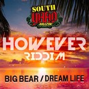 DREAM LIFE/BIG BEAR