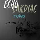 Notes/Echo Cardiac