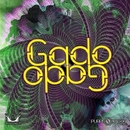 Gado Gado/Nukleall & Trippy Trail & Pineal & Dust & Mole & Module Virus & Ghost Signal & Samadhi & Dissociactive & Peace Ka & Dharma Project