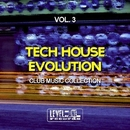 Tech House Evolution, Vol. 3 (Club Music Collection)/Alex Addea & Lake Koast & Black Nation & Voodoo King & Pole Pole & Saxomatto & Alex Neuret & Drum Nation & Zulu Crew & Babashao & Chris Chain & Black Guruh & Dirty Relight
