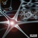 I Lost My Funk EP/Gonzalo Guarino