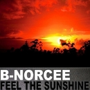Feel The Sunshine/B-Norcee
