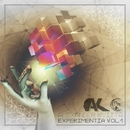 Experimentia Vol.1 (Array)/Alexander Kvitta