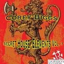 Secret House Elements Vol. 1/Corey Biggs