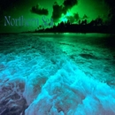 Northern Sea - Single/Cosmo Shaman
