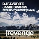 Feeling Your Vibe (Official Remixes)/DJ Favorite & DJ Zhukovsky & Incognet & DJ Dnk & Jamie Sparks & Anton Orf