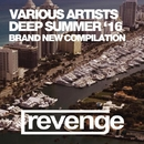 Deep House Summer 2016/DJ Favorite & DJ Kharitonov & Theory & Mars3ll & DJ Dnk & Niela Rocks & Dave Ramone & Mr. Freeman & Tony Rockwell
