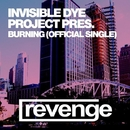 Burning (Official Single)/Invisible Dye project