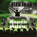 The Luv Of House/Elektron M