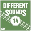 Different Sounds, Vol.14/Vova BEE & Reflexive & Mr.SleeP & Kanzman & Gene Karz & Sergey Forks & Tom Wolf & Eugene Keim & Dj Devin & Limitless Sence & Smyk Aleksander