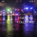 Essential Collected/X-Killer & Owen Sound Attack & Maljet & Invisible Brothers & Disbase System & REACTORS (R) & MgStack & F.I.69 & Sunn & JetMusic & Mix`usha & Shiza & Garage crew & Alexkupen & REACTOR (R) & F.I. 69 & Boddy Gray & OCrow & Reactors & Mr Baskus & Dub