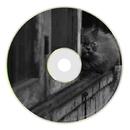 Momentum EP/Beat Tribe