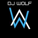 EDM/Dj Wolf & SCNDL
