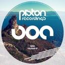 Visionair EP/Mend