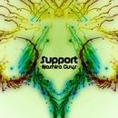 Support - Single/Nashira Guys