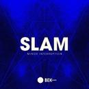 Minor Interruption/Slam