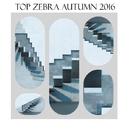 Top Zebra Autumn 2016/Valefim Planet & Sergey Sirotin & Golden Light Orchestra & Stas Exstas & Fridrich Lichtenberg & EVG & Yuriy Pilin & G-Rays & Pasechnik & Groofeo & Fenix Project & Salt Sea