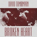 Broken Heart/David Tamamyan