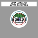 After The Storm/Luca Lombardi