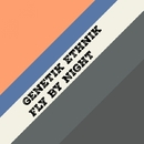 Fly By Night - Single/Genetik Ethnik