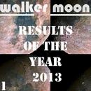 Results Of The Year 2013/Raimon & VIN DETT & Jean Luvia & Dj Kolya Rash & 2 Masters & Skorpy & Amind Two Guys & Plazmatron & Zzone'm Mariiva & Sergey Lemar & Green Cast & Noizy Neighbors & GraySP
