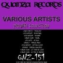 Private Collection/Tamer Fouda & Lewis Fautzi & Balex F & DJ Fuzzy & Kev Wright & RedDub