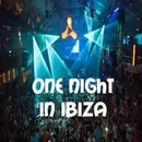 One Night In Ibiza/Royal Music Paris & Candy Shop & Various