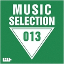 Music Selection, Vol. 13/Royal Music Paris & Big Room Academy & Dj Mojito & Alex Greenhouse & DJ Vantigo & Big & Fat & Andrew Raven & DJ Orgazm & Dj Kolya Rash