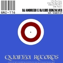 Mr. Tamer EP/DJ Luis Gonzalves & DJ Andrego