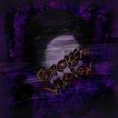 Broken Vision/abhrocks & leety