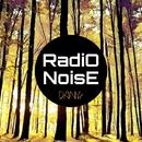 Radio Noise - Single/Danyr