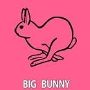 Move In Miami/Big Bunny & 21 ROOM