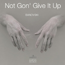 Not Gon' Give It Up/Banovsky