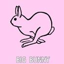 Tech Rabbits/Rousing House & Big Bunny & 21 ROOM & Droff
