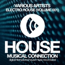Electro House (Volume 001)/DJ Favorite & DJ Kharitonov & Drop Killers & Freshdance Project & Recovery Mafia & Dave Ramone & Almost Home & Hack Jack & Murrell & Steve Montana