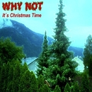 It's Christmas Time/Why Not
