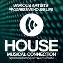 Progressive House Life/DJ Favorite & Theory & Pumping Guys & Recovery Mafia & Grander & Mainstream Bitch & Niela Rocks & Doublefast & Anbargo & Neven & Murrell & Steve Montana & DJ Swaggy