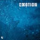 Emotion/Max Grade