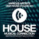 Deep House (Volume 001)/Infuture & DJ Favorite & DJ Kharitonov & Will Fast & Lykov & DJ Dnk & Get Twice & Different Guys & Hack Jack & Murrell