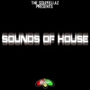 Sounds Of House/The SoulFellaz