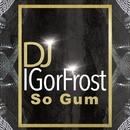So Gum - Single/Dj IGorFrost